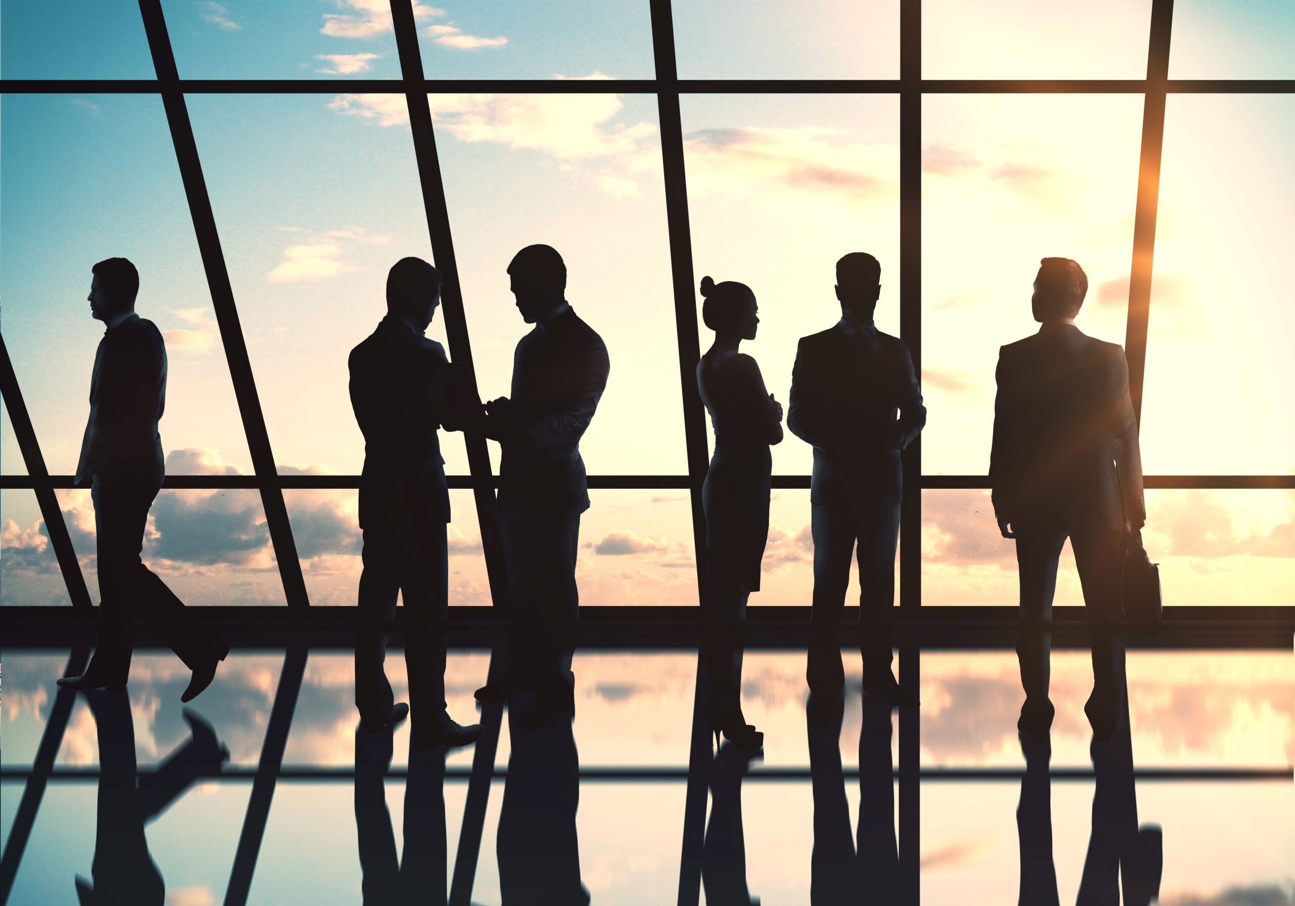 silhouette of several business people